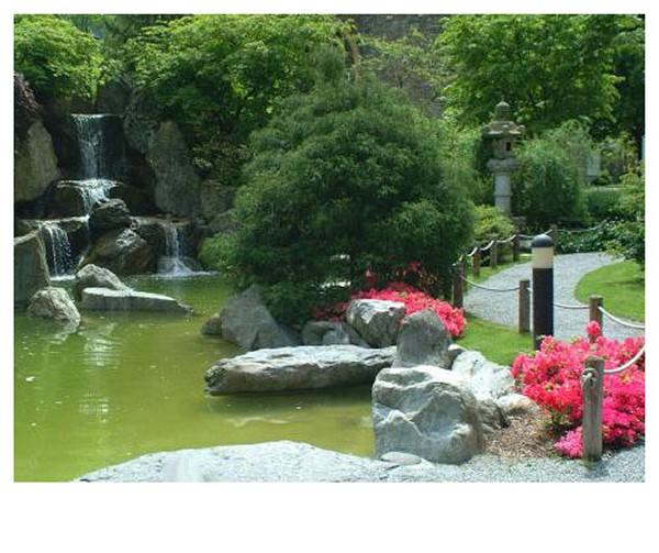 Cr ation de jardin niort entretien de jardin niort for Jardin royal niort